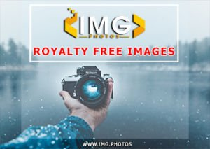 free-stock-images-img-photos-350